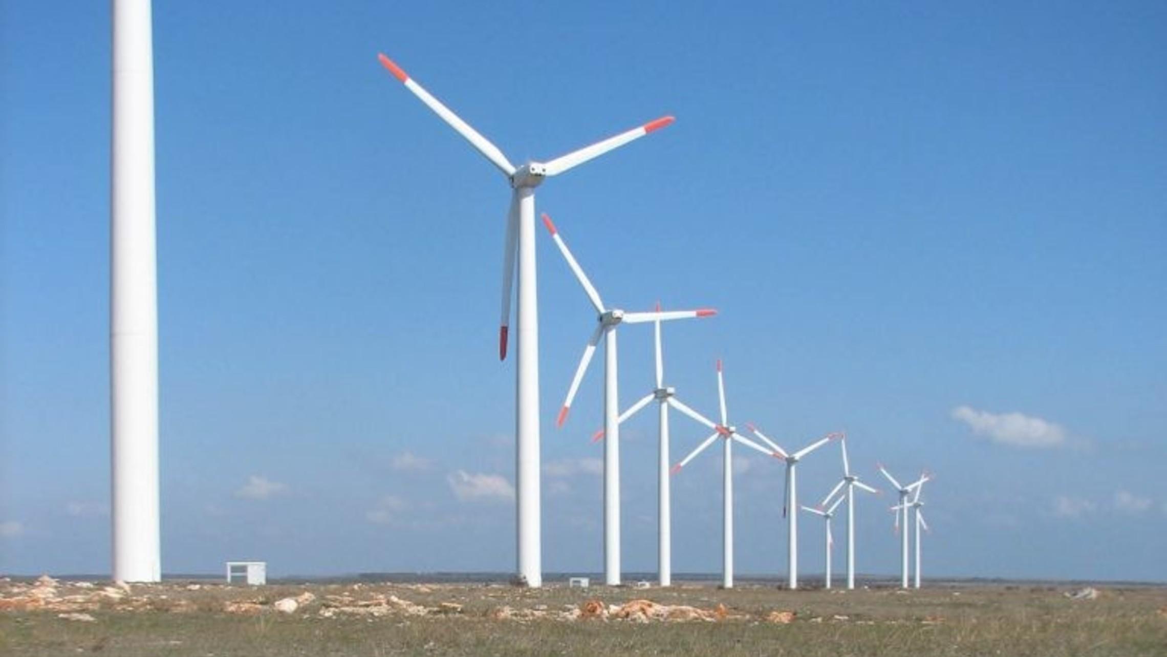 Bird Wind Turbine Collision Bspb Birdlife Bulgaria 768x1024